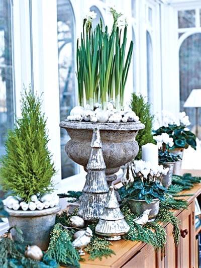 adornos navideños con plantas