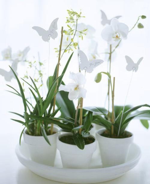 arreglo floral original Ideas para hacer Centros de Mesa originales