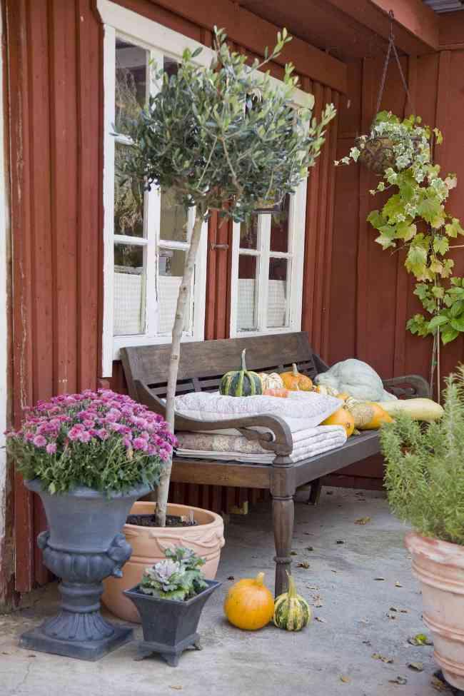 com-crear-jardin-privado-9