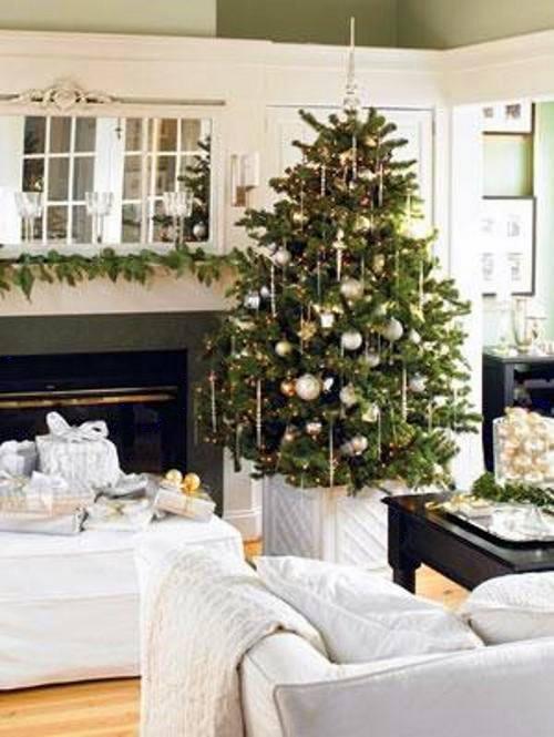 como cuidar arbol navidad natural 6 Cómo Cuidar un Árbol de Navidad Natural