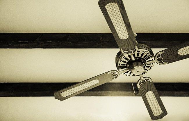 como elegir ventilador hogar 1 Cómo Elegir un Ventilador para el Hogar