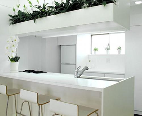 decoracion cocinas pequenas color blanco 4 Decoración de Cocinas Pequeñas: Color Blanco