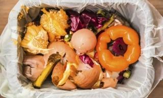 Desechos Orgánicos para una Compostera en Casa