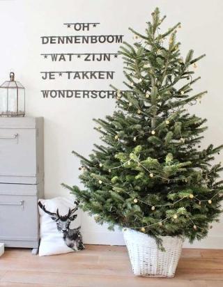 Nuevas Tendencias para Navidad