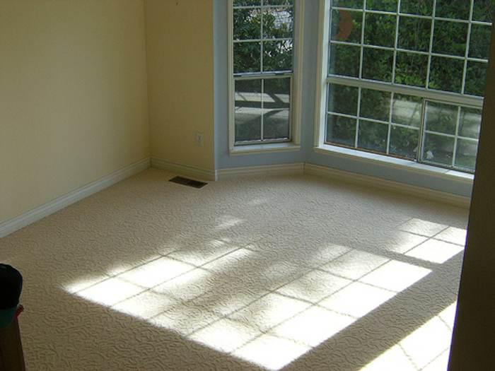 tipos de suelos alfombra moqueta Tipos de Suelos  Segunda Parte